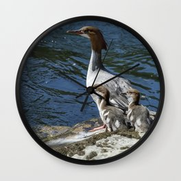 Female Merganser with Her Young Wall Clock