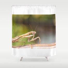 Mantis Shower Curtain