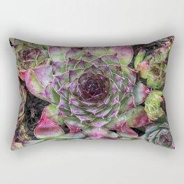 Natural Geometry / 4 Rectangular Pillow