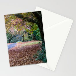 Mount Wilson, Blue Mountains Stationery Cards
