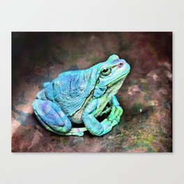 The InFocus Happy Frog Collection VIII Canvas Print
