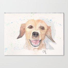 Smily dog Canvas Print