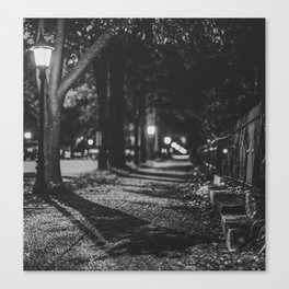Urban / Streetlight / Night / Photography Canvas Print