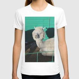 Fluff head T-shirt