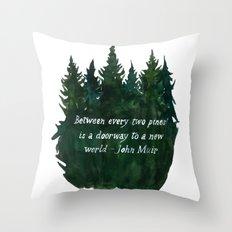 A Dooway To A New World Throw Pillow