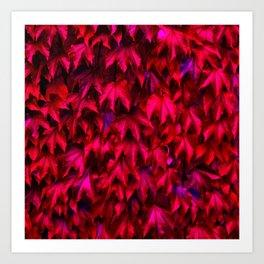 red wine leafs Art Print