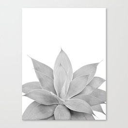 Gray Agave #1 #tropical #decor #art #society6 Canvas Print
