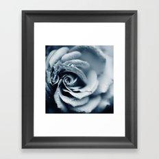 Rose - powder blue Framed Art Print