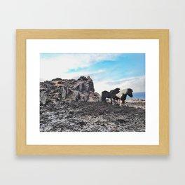 Wild life Framed Art Print