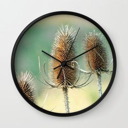 Look out - prickly plant ! Wall Clock