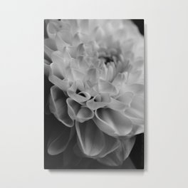 flower close up - black/white - nine Metal Print