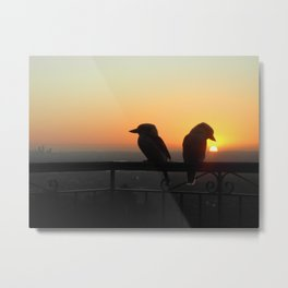 Sunset Kookaburras Metal Print