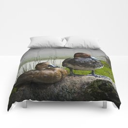 Canvasback Duck Pair by a Pond Comforters