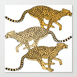 Go Cheetahs Go Pen and Ink by Lorloves Design Canvas Print