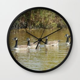 Canadian geese in the lake autumn (Branta canadensis) Wall Clock