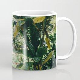 Tropical Paradise - Kauai Hawaii Coffee Mug