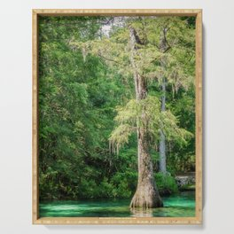 Florida Cypress Tree and Spring Serving Tray