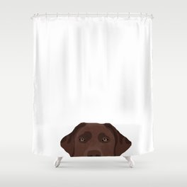 Peeking chocolate labrador dog breed cute dog face labrador retrievers Shower Curtain