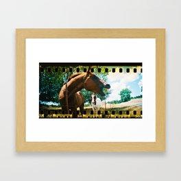 The Laughing Horse. Framed Art Print