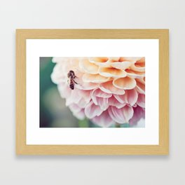 Bees III Framed Art Print