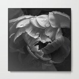 Flora 1 Metal Print