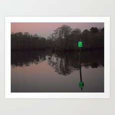 greenlight, that's my left eye. Art Print