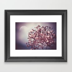 Tender Lights Framed Art Print