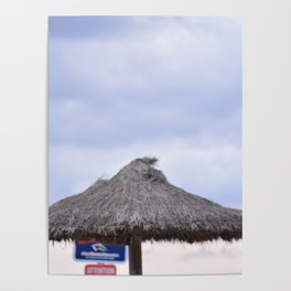 palm tree on the beach and in the sky, travel for leisure, Mallorca and enjoy Poster