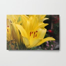 A Spark I Can't Undo Metal Print