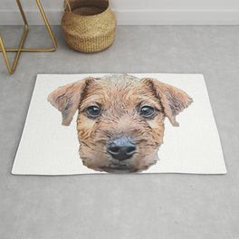 Dog Lakeland Terrier dog breed Lake District hypo-allergenic Rug