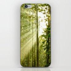 A Light Peeks Through iPhone Skin