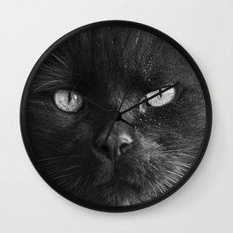 Dusty Old Cat Wall Clock
