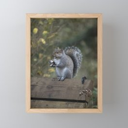 Squirrel Snack II Framed Mini Art Print