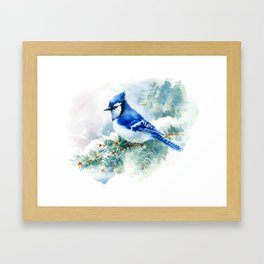 Watercolor Blue Jay Framed Art Print