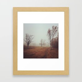 Canaan Valley Trail Framed Art Print