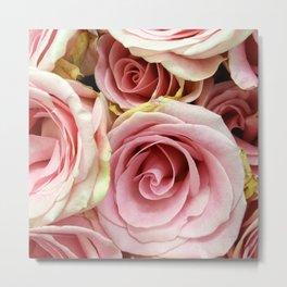 Pink Rose 9 Metal Print