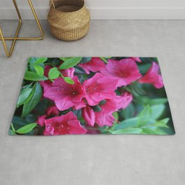Unwind with a pink rhododendron Rug