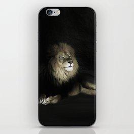 Smiling Lion iPhone Skin