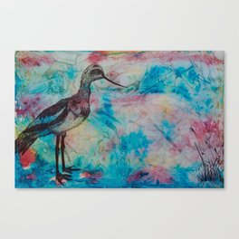 Wandering Tern  Canvas Print