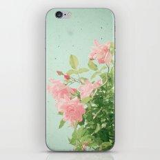 Pink Roses iPhone Skin