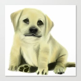 Chubby Puppy on a White Background Canvas Print