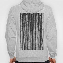 Birch || Hoody
