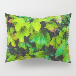 green ivy leaves texture background Pillow Sham
