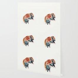 Armadillo Wallpaper