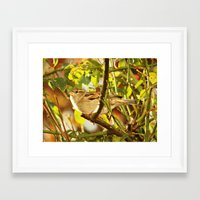 sparrow Framed Art Prints featuring Sparrow by Judy Palkimas