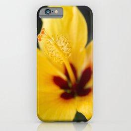 Boreas Tropical Hibiscus Lemon Drop iPhone Case