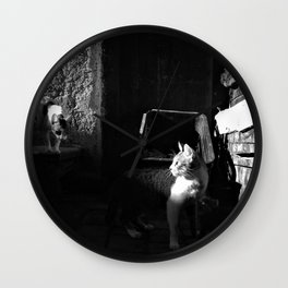 Les chats de Rabat half light Wall Clock