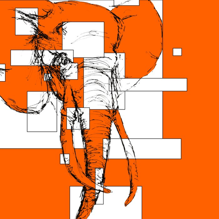 Orange is the New Elephant Duvet Cover