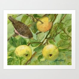 Bird in Apple Tree with Apples - Watercolor on Panel - Laurie Rohner Art Print