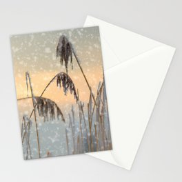 Phragmites Reed grass in the snowfall Stationery Cards